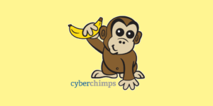 CyberChimps Responsive Pro Review: A Fully Customizable WordPress Theme For Bloggers!